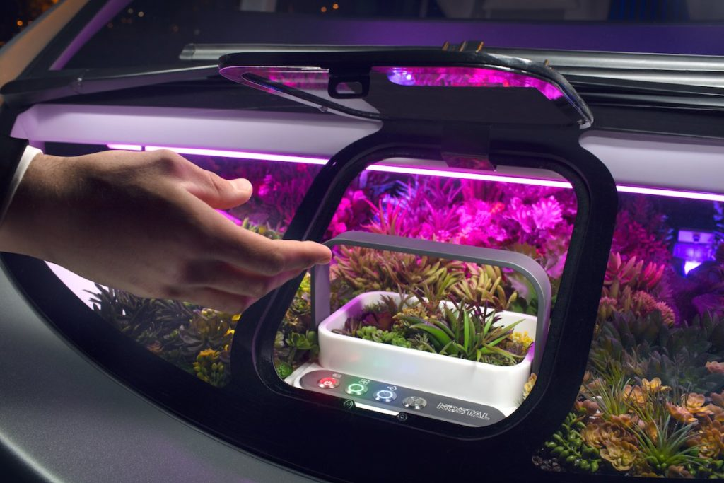 Concept Cars - Rinspeed - Oasis - Features an actual garden - Yorkshire Fleet